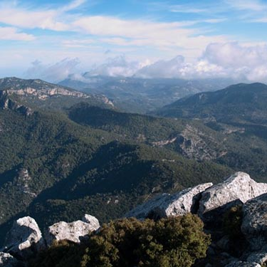 Hiking in Majorca - Puig de Galatzo